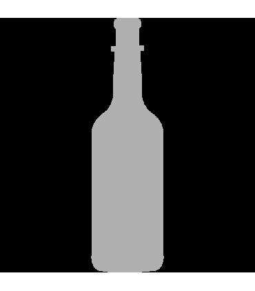Prepravka Coca Cola 1/24